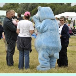 Picture of Blue Bear